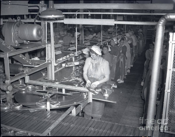 Photograph - Packing Line Cannery Row Monterey Circa 1948 by California Views Archives Mr Pat Hathaway Archives