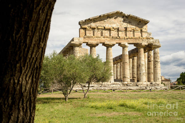 Photograph - Paestum Temple by Prints of Italy