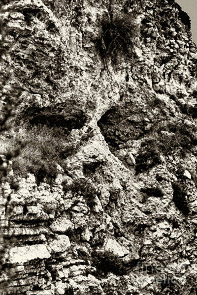 Jewish Homeland Photograph - Paid In Full At Golgotha by Thomas R Fletcher