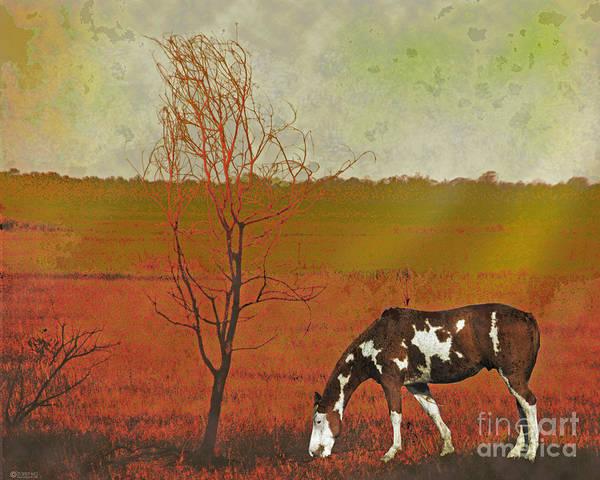 Digital Art - Paint by Lizi Beard-Ward