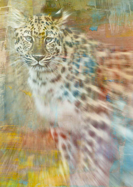 Mixed Media - Paint Me A Cheetah by Trish Tritz