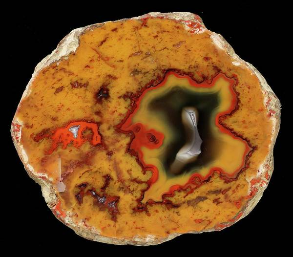 Geodes Photograph - Paint Rock Agate by Natural History Museum, London/science Photo Library