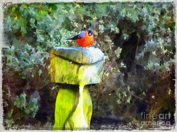 Painting - Painted Bullfinch S2 by Vix Edwards