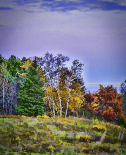 Wall Art - Photograph - Painted Autumn by Thomas Young