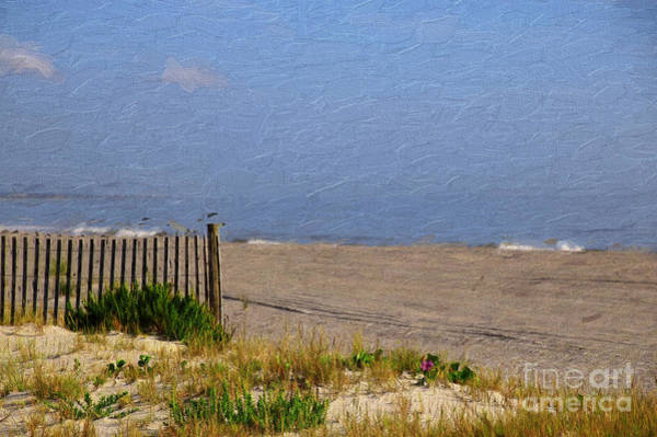 Photograph - Painted Beach by Dave Bosse