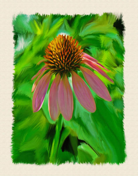 Wall Art - Photograph - Painted Cone Flower by Dave Sandt