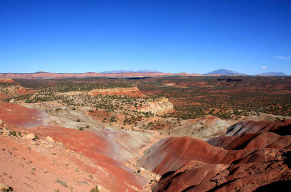 Photograph - Painted Desert Landscape by Aidan Moran