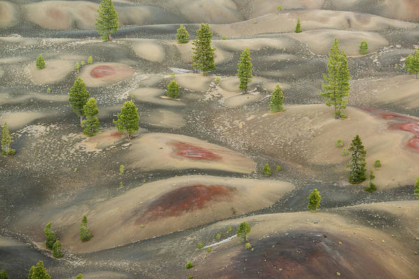 Photograph - Painted Dunes Lassen Volcanic Np by Kevin Schafer