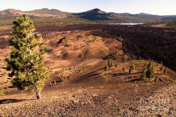 Photograph - Painted Dunes Overlook by Adam Jewell