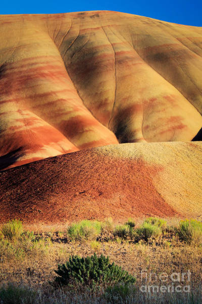 Painted Desert Photograph - Painted Hills And Grassland by Inge Johnsson