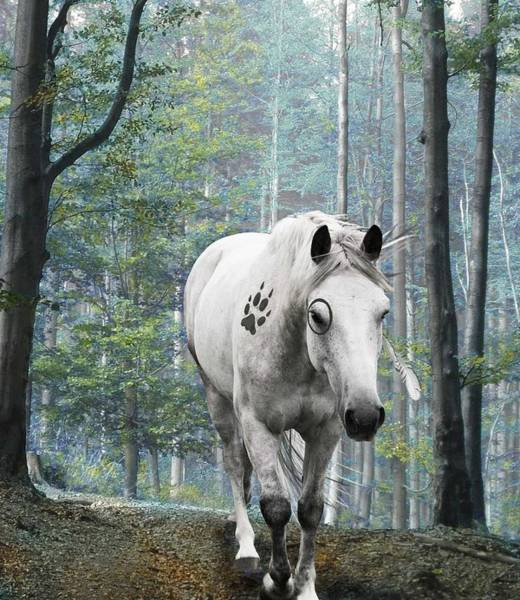 Wall Art - Digital Art - Painted Horse by Diana Shively