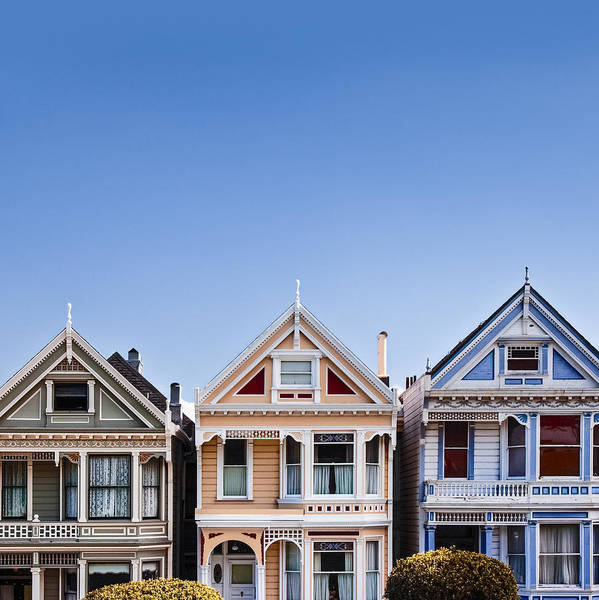 Blue Sky Wall Art - Photograph - Painted Ladies by Dave Bowman
