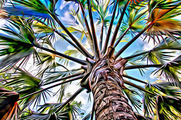Photograph - Painted Palms by Alice Gipson