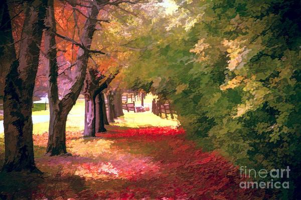 Photograph - Painterly Forest Trail by Jim Lepard