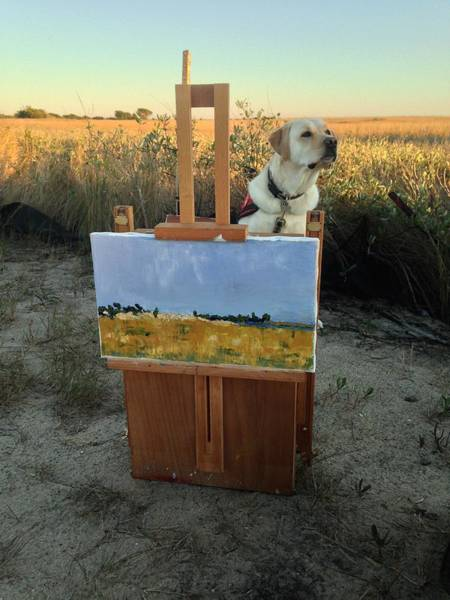Service Dog Photograph - Come Paint With Me  by Mary Hahn Ward