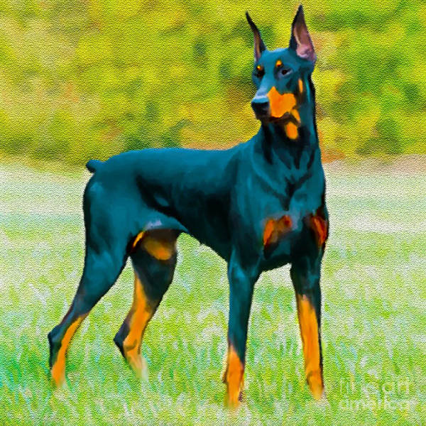 Painting - Painting Doberman Pincher by Bob and Nadine Johnston