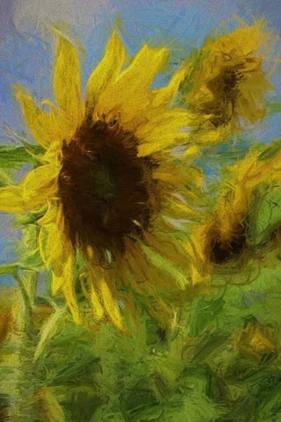 Conyers Photograph - Painty Sunflower by Cathy Lindsey