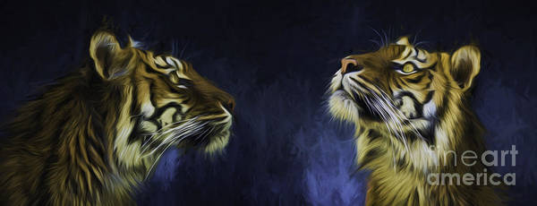 Wall Art - Photograph - Pair Of Sumatran Tigers by Sheila Smart Fine Art Photography