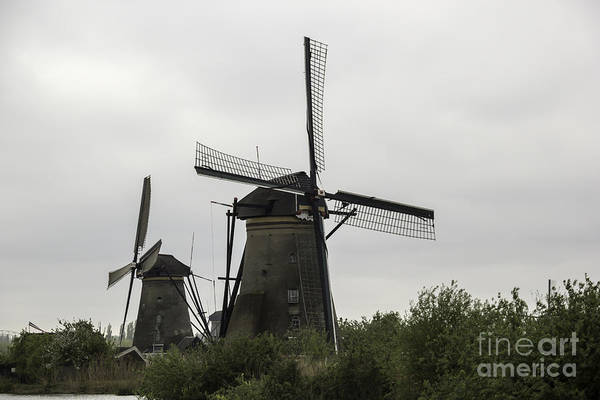 Noord Holland Wall Art - Photograph - Pair Of Windmills 2 Kinderdijk by Teresa Mucha