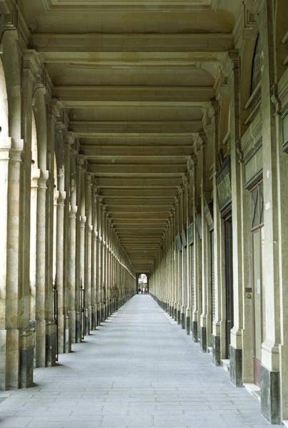 Photograph - Palais Royale by Susie Rieple