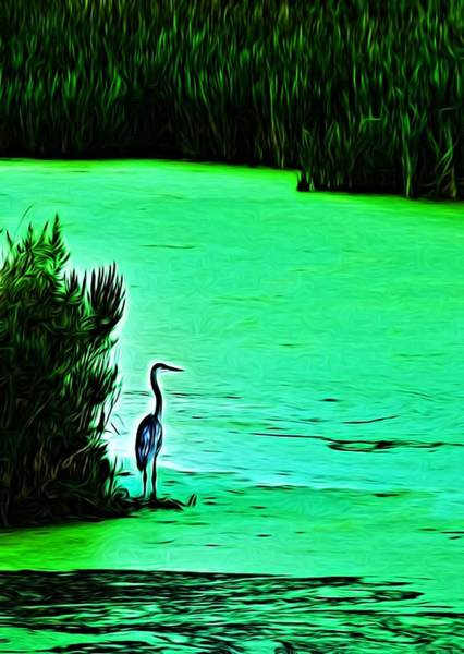 Photograph - Pale Blue In A Sea Of Green by Mark Fuller