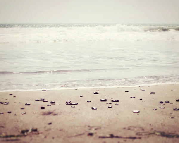 Earthtones Photograph - Pale Shore by Lupen  Grainne