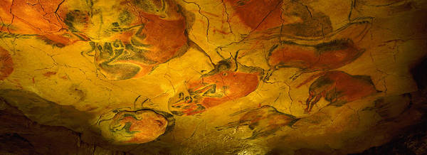 Petroglyph Photograph - Paleolithic Paintings, Altamira Cave by Panoramic Images