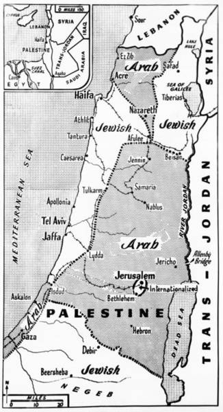 Wall Art - Photograph - Palestine State Proposal by Underwood Archives