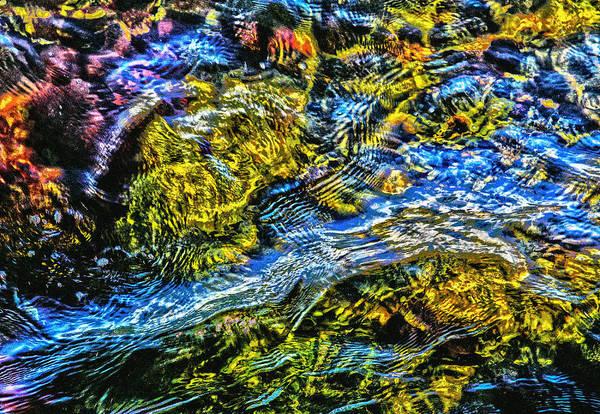 Photograph - Palette by Kim Lessel