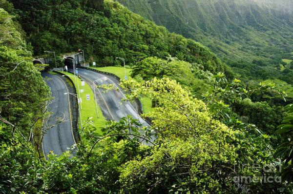 Photograph - Pali Highway by Charmian Vistaunet