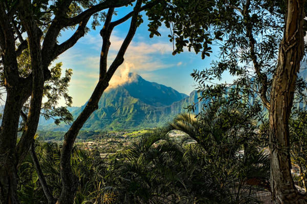 Photograph - Pali Lookout For Puu Alii by Dan McManus