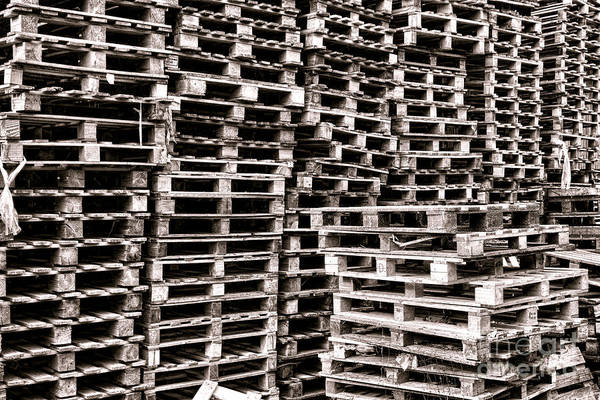 Freight Wall Art - Photograph - Pallets  by Olivier Le Queinec