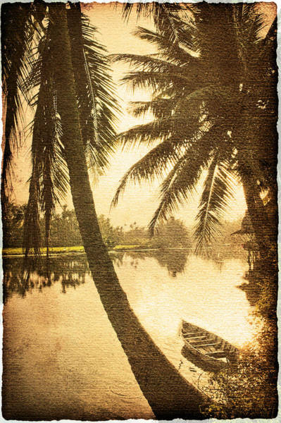 Wall Art - Photograph - Palm And Boat by Skip Nall