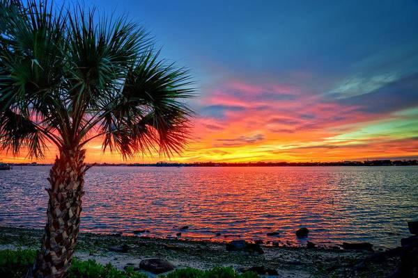 Photograph - Palm Beach Sunset by Lynn Bauer