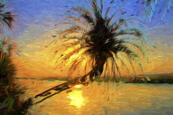 Flagler Photograph - Palm Beauty by Alice Gipson