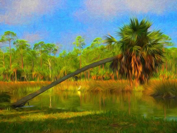 Photograph - Palm Going Down by Alice Gipson