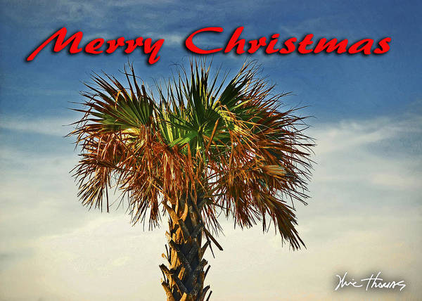 Digital Art - Palm Head Christmas Image by Michael Thomas