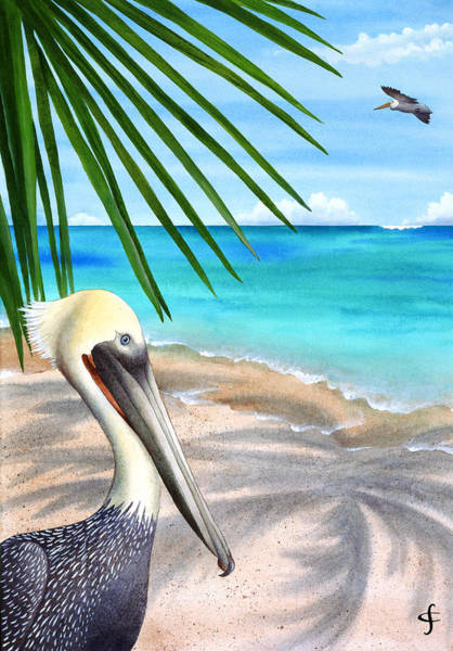 Exotic Bird Photograph - Palm Readings by MGL Meiklejohn Graphics Licensing