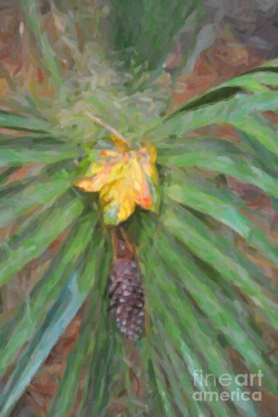 Digital Art - Palm Splendor by Dale Powell