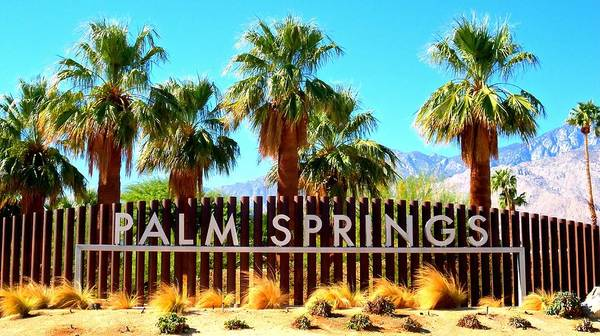 Wall Art - Photograph - Palm Springs 1 by Ron Kandt