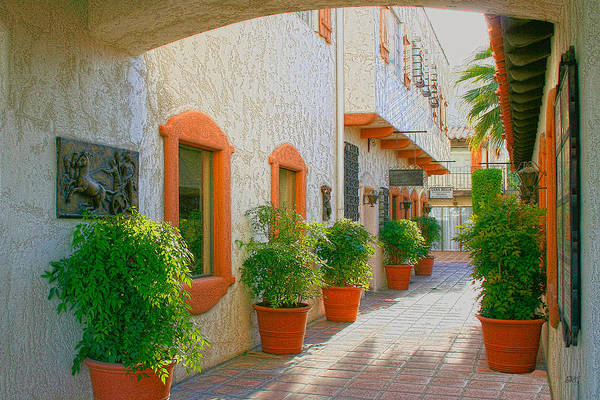Photograph - Palm Springs Courtyard by Ben and Raisa Gertsberg