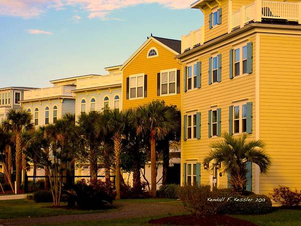 Photograph - Palm Tree Beauty At Isle Of Palms by Kendall Kessler