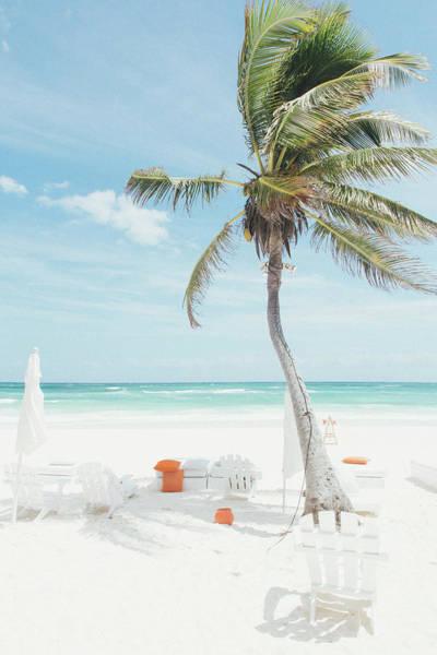Quintana Roo Photograph - Palm Tree Waving In The Wind At Beach by Sasha Weleber