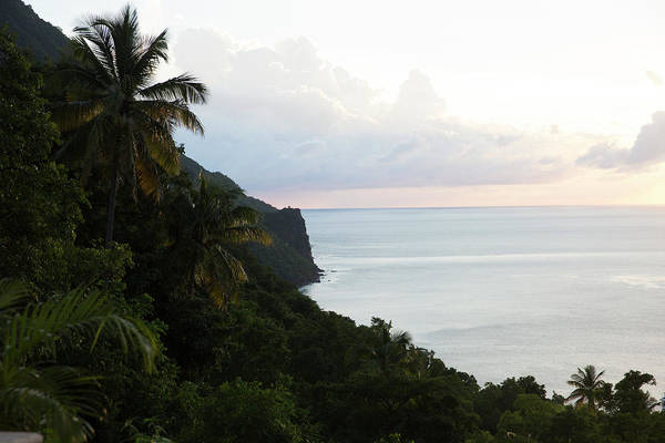 St. Lucia Photograph - Palm Trees And Cliffs With Ocean by Ben Rosenzweig