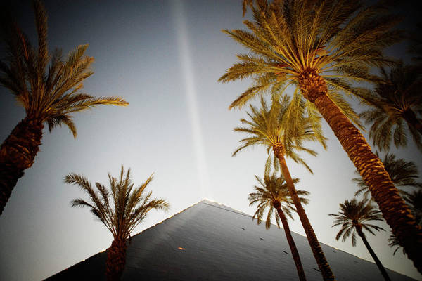 Juxtaposition Photograph - Palm Trees And Roofline Of The Luxor by Ron Koeberer