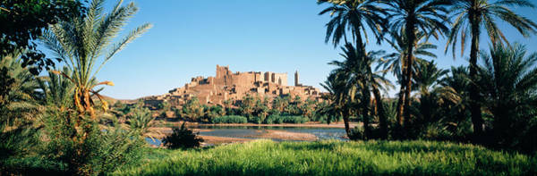Casbah Photograph - Palm Trees With A Fortress by Panoramic Images