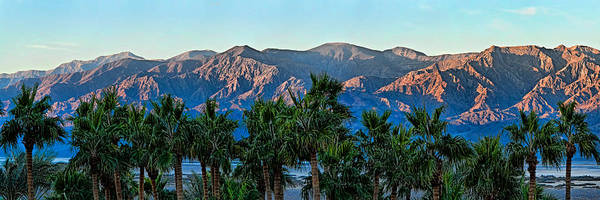 Furnace Creek Photograph - Palm Trees With Mountain Range by Panoramic Images
