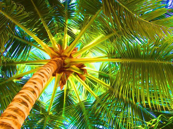 Belize Digital Art - Palm Umbrella by Geoff Strehlow