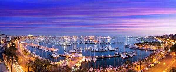 Wall Art - Photograph - Palma Harbour And Cathedral At Dusk by Travelpix Ltd