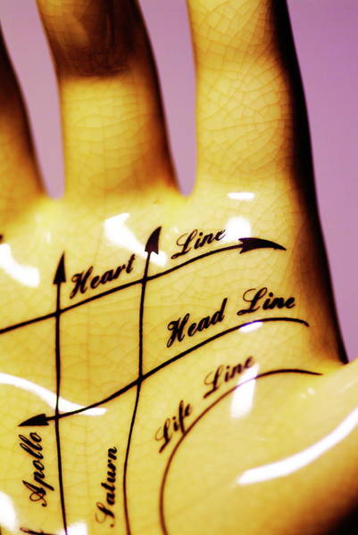 Palm Reading Wall Art - Photograph - Palmistry by Alfred Pasieka/science Photo Library